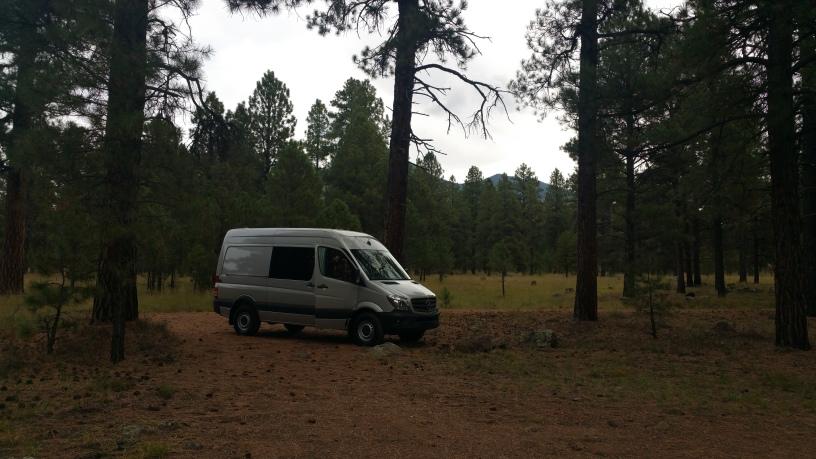 Silver Sprinter van in Flagstaff AZ in the woods